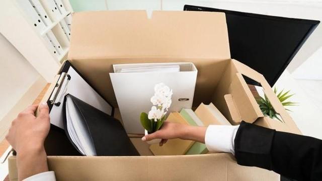 ⭐ Можно ли уволиться без отработки двух недель по собственному желанию с работы: как правильно написать заявление на увольнение